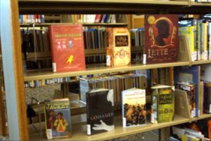 Pella Public Library Resources   Kuyper Foundation